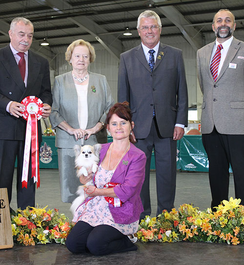 Paignton 2015 Reserve Best In Show