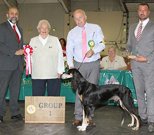 Paignton 2016 Hound Group 1