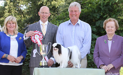 Paignton Reserve Best In Show