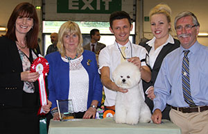 Paignton 2016 Toy Puppy Group Winnner